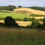 What next in Chiltern & South Bucks Local Plan chaos?