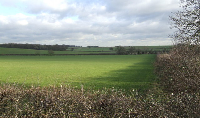 Judicial review bid launched into South Oxfordshire Local Plan