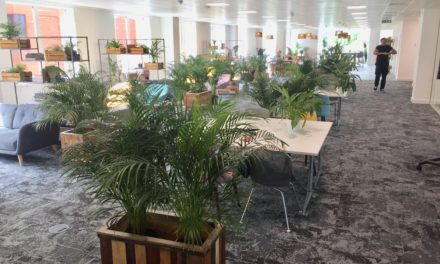 Thriving workspace is denied Government Covid relief