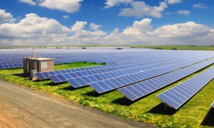 Sun rises on Cambridgeshire's solar energy market