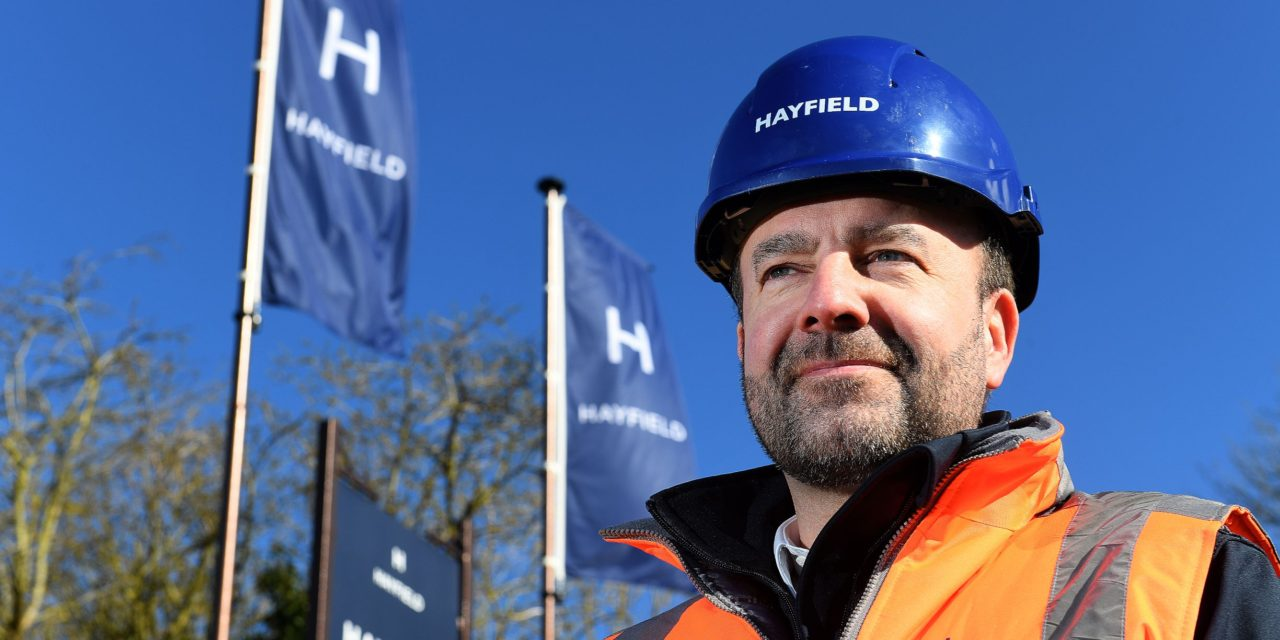 Hayfield appoints Ken Mulpeter