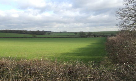 Appeal date set for South Oxfordshire Local Plan review appeal