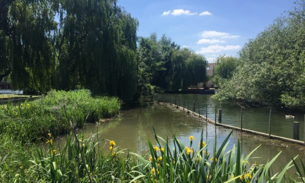 View from the riverbank: Protection for local centres